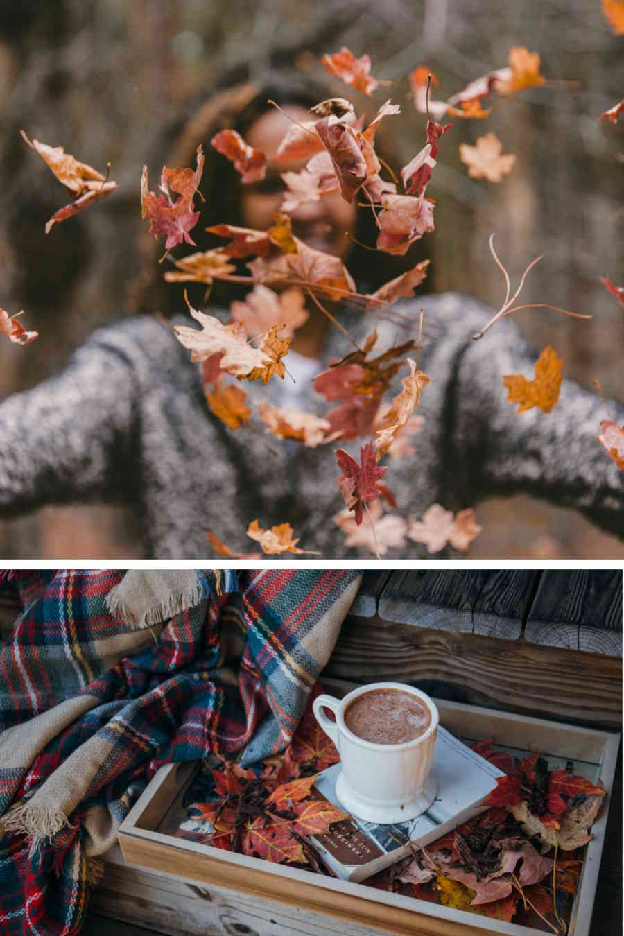 L'échoppe Végétale - Inspirations pour un automne pas monotone | les feuilles séchées s'envolent il est temps de prendre un bonne tasse de thé, un plaid et un livre
