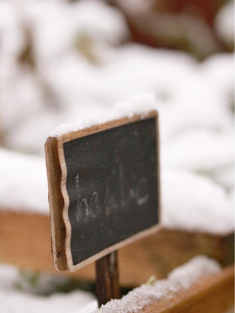 neige sur le balcon en février avec petite pancarte pour écrire le nom des plantes