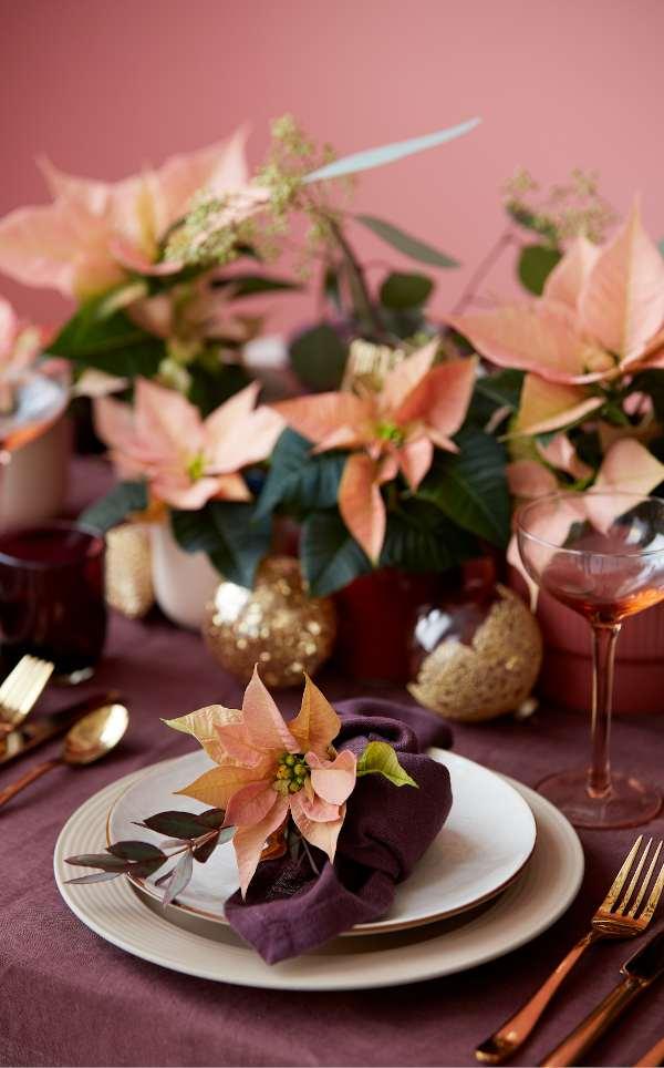 rond de table de fete poinsettia rose, table de fête